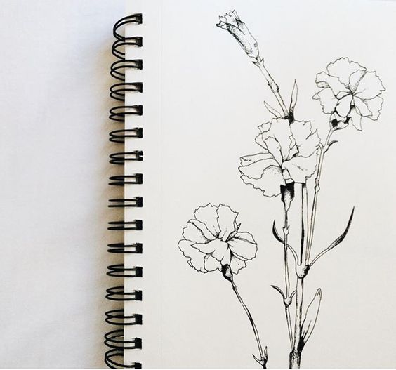 Dainty floral design, carnations, tattoos and body art, carnation Illustration, floral inspiration, print, hand drawn, carnation tattoo, dainty carnations, carnation Drawing, art, floral tattoo, creative illustration, illustration, #alannahkiarah #carnation #carnationillustration