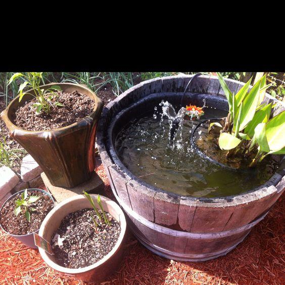 Whiskey Barrel Goldfish Pond Gardening Glam Pinterest