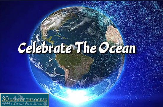 June 8 is World Ocean Day! Take a few moments today to celebrate with this video. #30DaysofOcean