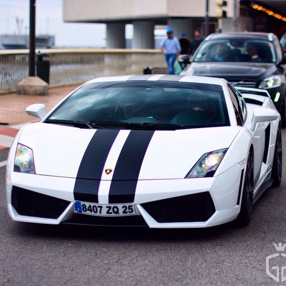 Lamborghini Gallardo  Follow our Friend @Kunal00 CEO of www.BullsOnWallStreet.com @Kunal00  #  Photo by @gilles_ancion