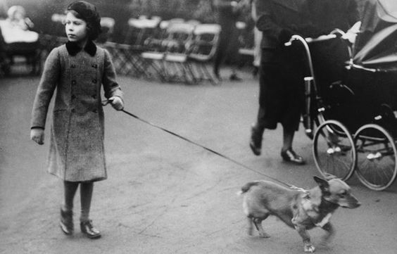 With a Corgi, her pup of preference, in London's Hyde Park.   (Photo by London Express/Getty Images) (Getty Images)