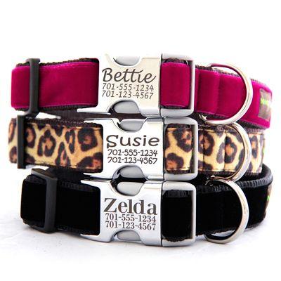 Engraved Buckle Dog Collar *14 Velvet Styles