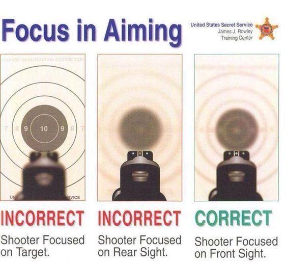 Sight picture target gun