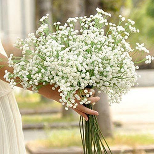 Silica Gel Real Shot These Adorable White Gypsophila Flowers Are Perfect To Add Color To An Gypsophila Wedding Flower Bouquet Wedding Silk Flowers Wedding