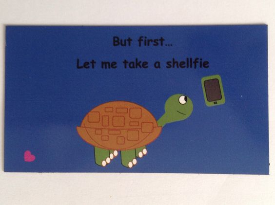 Turtle magnet $2.50 free shipping. 3.5in x 2in