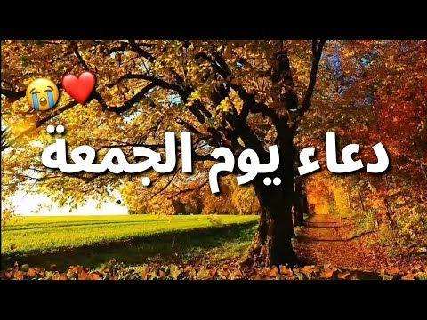أجمل حالات واتساب جمعة مباركة دعاء يوم الجمعة مقاطع انستغرام دينية استوريات جمعة طيبة Youtube