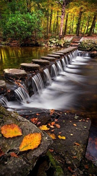 Degraus de pedra atravessando o rio  Shimna no Parque Florestal Tollymore, em Co. Down, Irlanda.  Fotografia: Steve Emerson no Captive Landscapes.