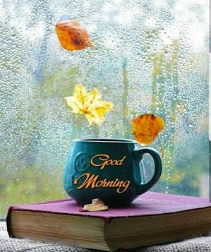 Good Morning Images For Whatsapp Free Download Hd Wallpaper Pictures Photos Of Good Mo Good Morning Beautiful Images Good Morning Wallpaper Good Morning Msg Good morning hd wallpapers free download