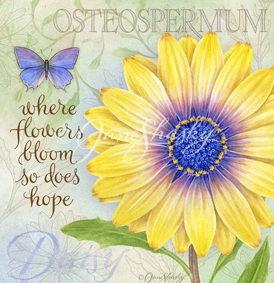 where flowers bloom so does hope positive