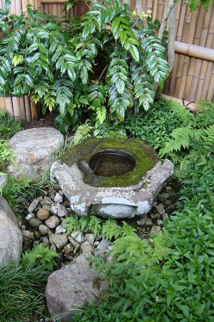Shade garden water features and gardens on pinterest for Japanese water feature