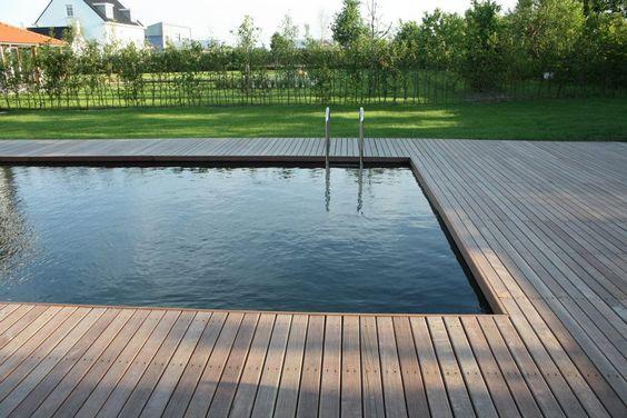 Van raaijen hoveniers almere moderne tuin met zwemvijver for Zwembad leggen
