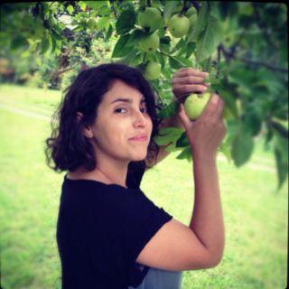 Manzanas para la chicha