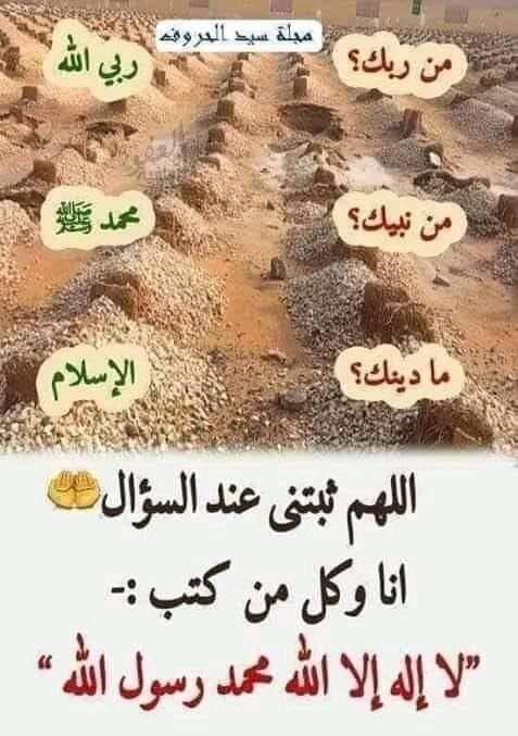 Pin By Essam Sayed Mohamed On الكلام الطيب App Desserts Food