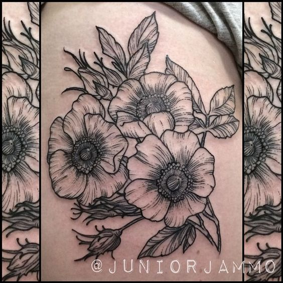 Beautiful Alberta roses for Sarah on the weekend  thanks for letting me do your first tattoo on your adventure from Canada! #tattoo #juniorjammo #juniortattoosandart #roses #albertarose #tattoorose #lineworktattoo #blackandgrey #blackandgreytattoo #etchtattoo #firsttattoo #brisbane #brisbaneartist #brisbanetattoo #brisbanetattooer #brisbanetattooartist @westside_tattoo_brisbane @ladytattooers #darkartists #hippietattoos