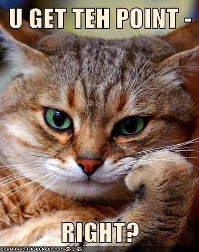 Andres Felipe por la vida: Golpeamos gatos por nuestra falta de responsabilid...