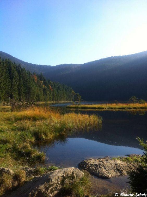 Inseln im kleinen Arbersee, Bayerischer Wald, #Bayern