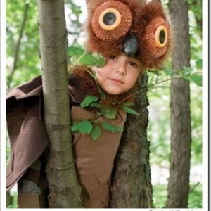 Adorable DIY Owl Costume