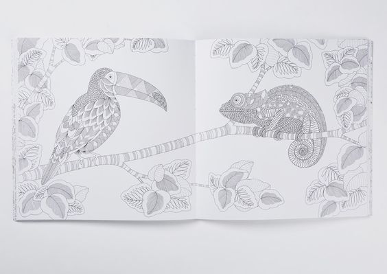 Animal Kingdombrings togethera collection of charmingand delightfulcreatures and is a celebration of ourspectacular natural world.From delicatedragonflies to the gigantic sperm whale, the te…