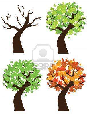 vector-maple-tree