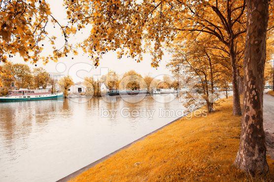 Parque da cidade - fotografia de stock royalty-free