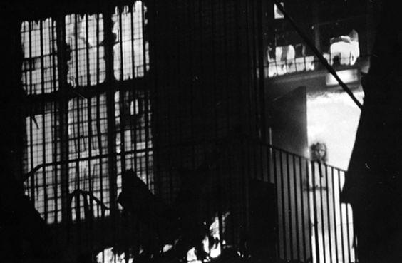 Una niña en la ventana  Este edificio estaba vacío cuando Tony O'Rahilly tomó la fotografía, sin embargo, se puede ver una figura en la ventana. En 1677, una niña prendió fuego un techo por accidente, quemó varias casas alrededor, y se cree que su fantasma ronda el lugar..