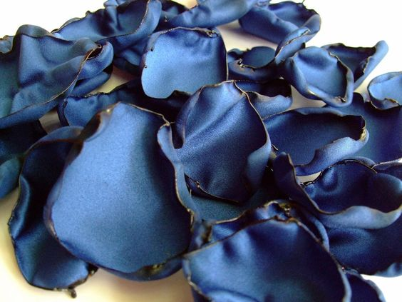 A personal favorite from my Etsy shop https://www.etsy.com/listing/208121406/royal-blue-flower-petals-rose-petals