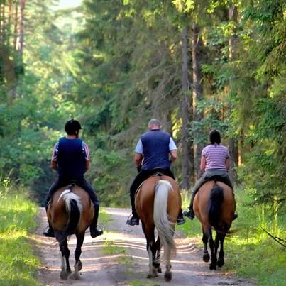 Tell us about the first time you went horseback riding. How old were you? Where did you ride? What kind of horse was it? Share your stories with us!