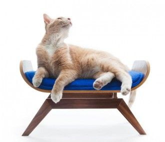The Canopy Lounge- Mid Century furniture for your cat. LOLZ.