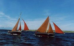 Racing the Galway Hookers on Galway Bay. Travel Destination with Gaelic Girl Ireland Experience