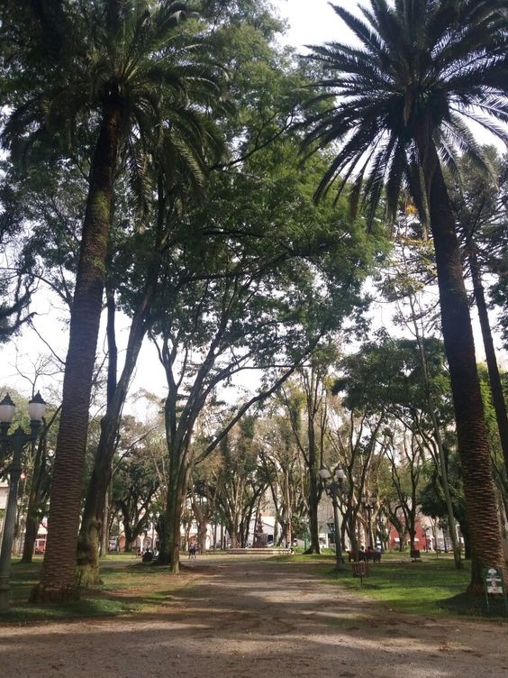 Curitiba e seus encantos !
