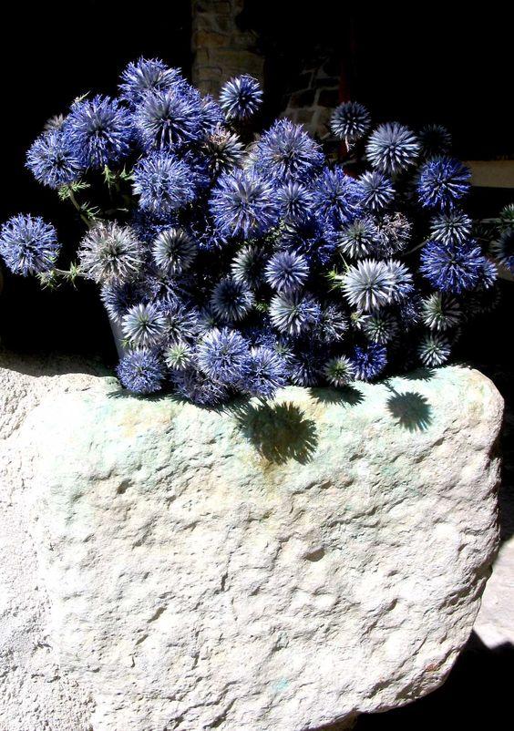 Flores azules adornan una fuente de piedra en el patio de la casa rural.