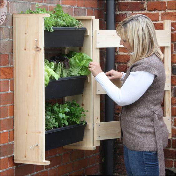 bookshelf planter, wall planter, wooden wall planter, planter for wall