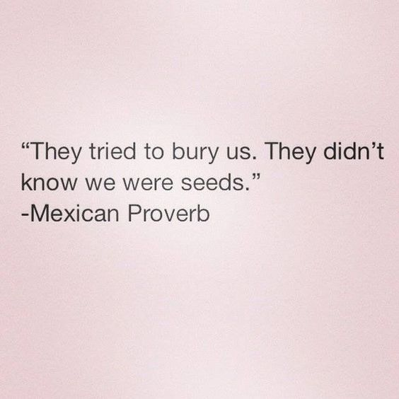 Mexican Proverb
