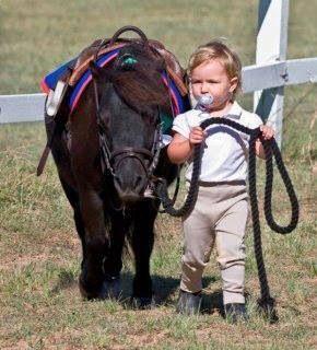 Сладко малко пони, водена от дете с биберон.  Това е прекалено сладък !: