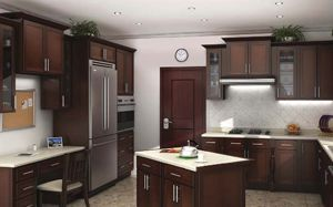 Ohio Discount Kitchen Cabinets Cleveland Ohio Kitchen Ideas Kitchen