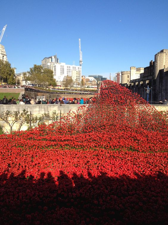 Lest we Forget - Tower of London