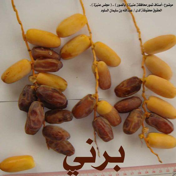انواع التمور بالصور Date Palm Fruit Grapes
