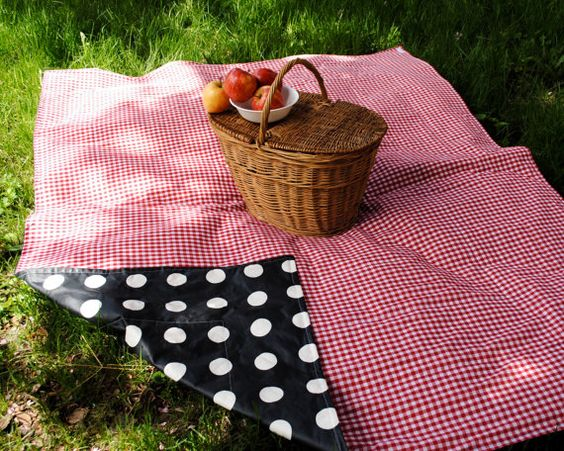 cute waterproof picnic basket