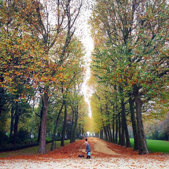 Jubel park or Cinquantenaire park in Brussels Pic by @instabrussels