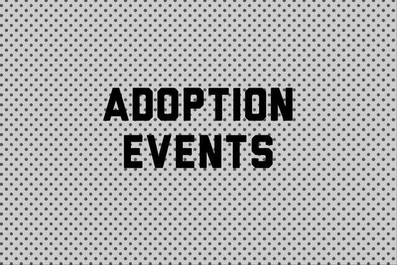 Adoption Events Board