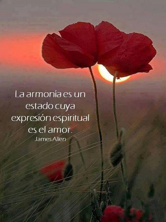 La armonia es un estado cuya expresion espiritual es el amor