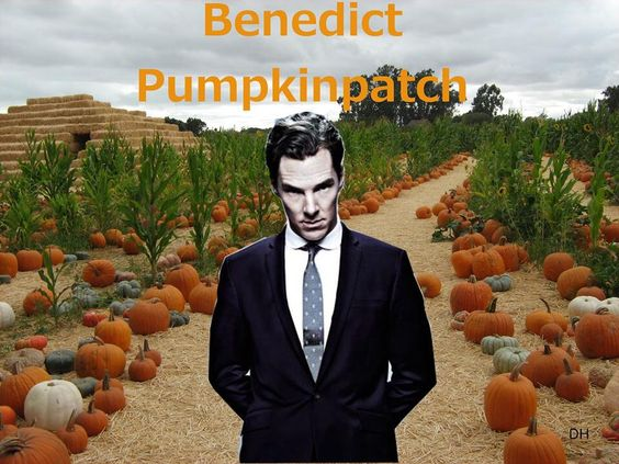 Benedict Pumpkinpatch...it really does work...