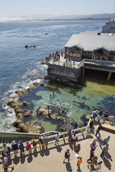 The Monterey Bay Aquarium located on Cannery Row~Image via Architect Magazine