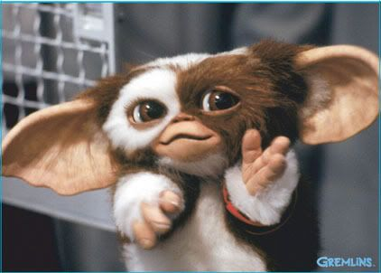 Image result for gizmo