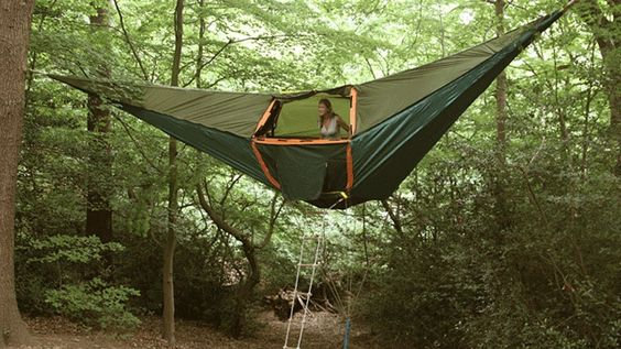 A hammock tent. perfection!