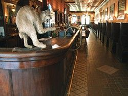 Belly up to the longest bar in Texas at the Esquire Tavern in San Antonio