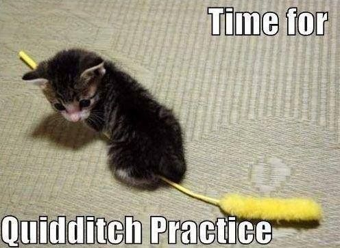 Time for quidditch practice.: