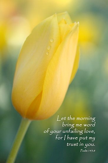 Psalm 143:8 Let the morning bring me word of your unfailing love; for I have put my trust in you.