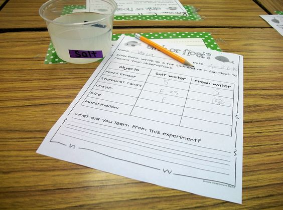 Free Sink Or Float Worksheet 2nd Grade Science