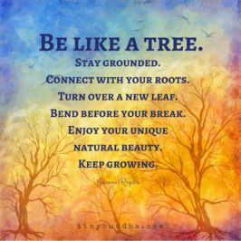 Be like a tree.: